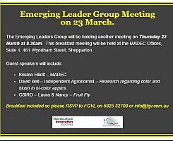Emerging Leader Group meeting - Thursday 23 March