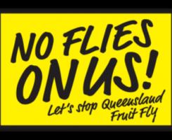 No Flies On Us!