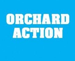 Find out what's happening in the orchard!!!